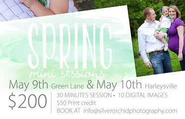 silver orchid photography, mini sessions, family portrait photography