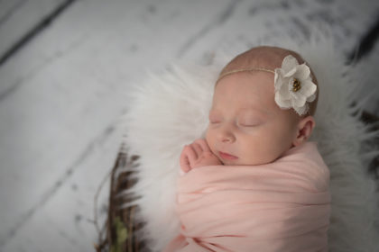 Sweet Little Lady Evelyn's Newborn Session