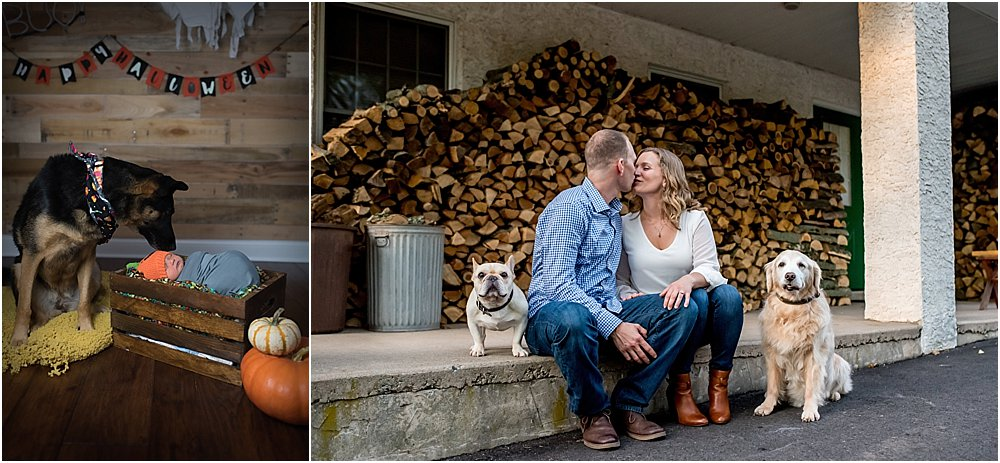 Silver Orchid Photography, Silver Orchid Photography Portraits, Portrait sessions, Family sessions, Newborn sessions, Engagement sessions, Puppies, Dogs are family too