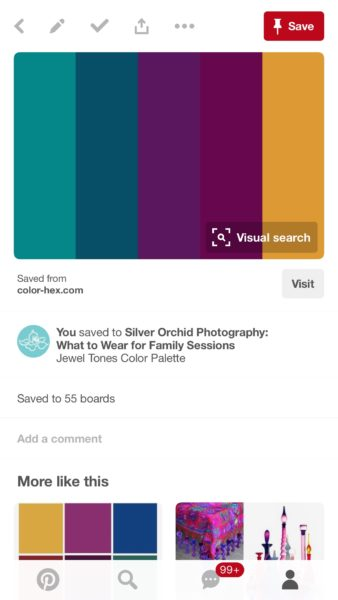 silver orchid photographer, color pallet, styling, family shoot
