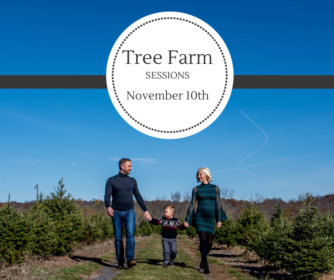 Christmas Tree Farm.
