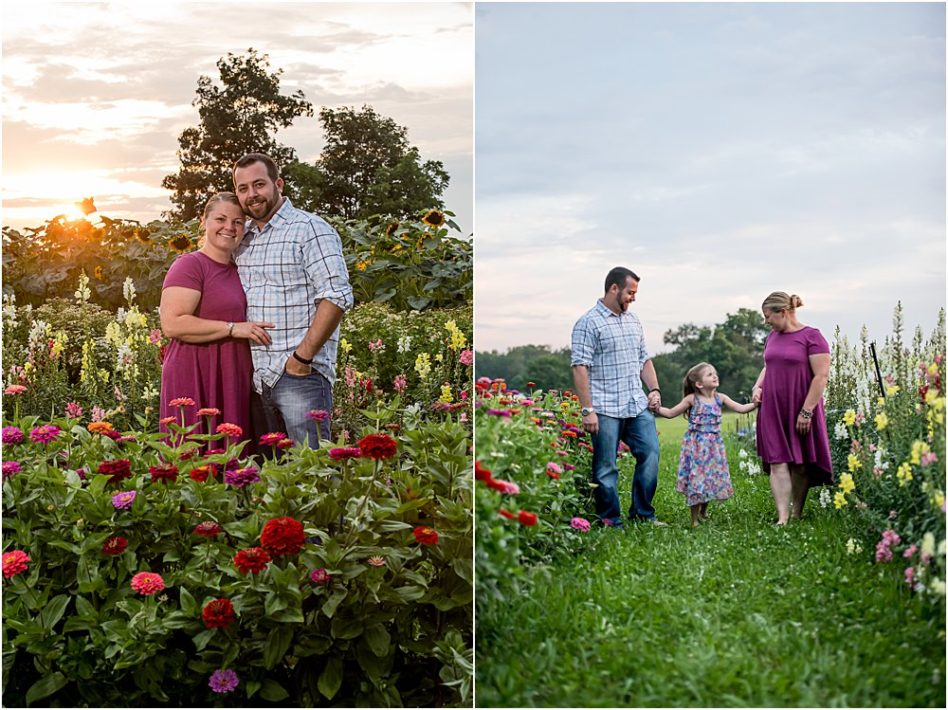 Silver Orchid Photography, Silver Orchid Photography Portraits, Perkiomenville, PA, Wildflower Sessions, Florals, Flower Session, Wildflowers, Spring Sessions, Summer Sessions