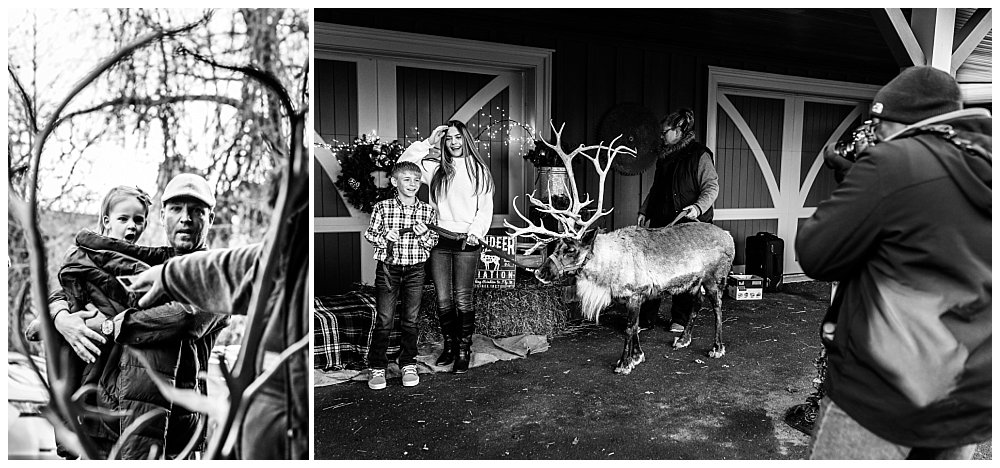 Silver Orchid Photography, Silver Orchid Photography Portraits, Christmas Portraits, Cool Yule, Cool Yule 2019, Cool Yule Behind the Scenes, Skippack PA