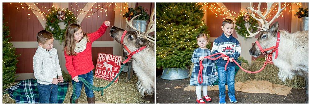 Silver Orchid Photography, Silver Orchid Photography Portraits, Christmas Portraits, Cool Yule, Cool Yule 2019, Cool Yule Favorites, Reindeer Sessions, Skippack PAv