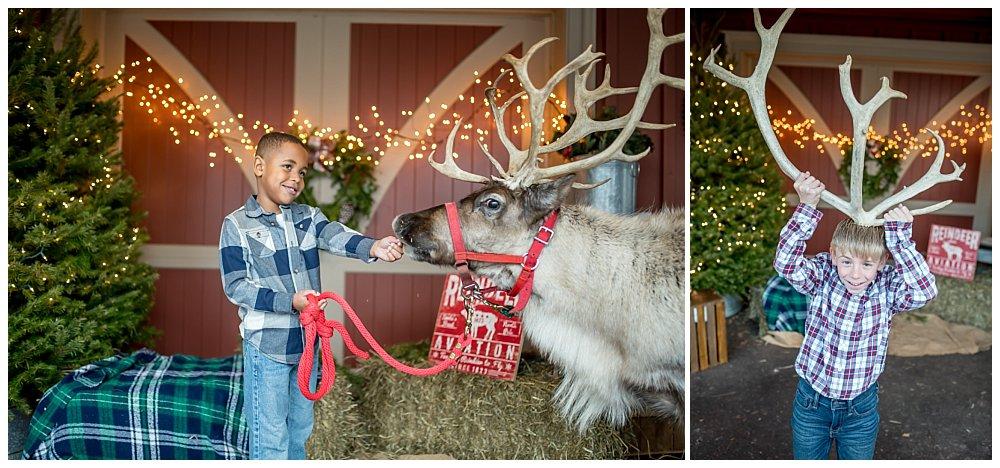 Silver Orchid Photography, Silver Orchid Photography Portraits, Christmas Portraits, Cool Yule, Cool Yule 2019, Cool Yule Favorites, Reindeer Sessions, Skippack PA